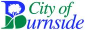 Medium burnside council logo