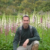 Primary john hiking flowers
