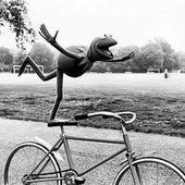 Primary kermit the frog on bike
