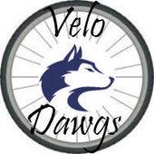 Primary velodawgs logo