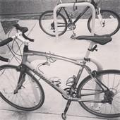 Primary 2017 bike