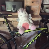 Primary unicorn bike