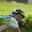 profile image for author CHERYL RAEBURN for Bucket List - Off-Road Duathlon
